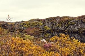 thingvellir5-copy-2000