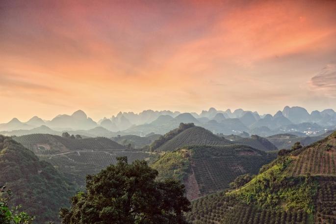 QiXianFeng seven star tea plantation sunset