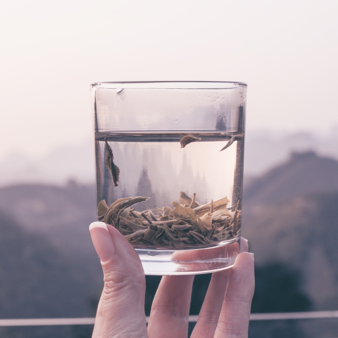 QiXianFeng tea plantation